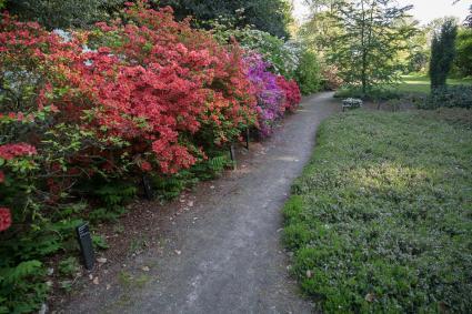 Belmonte Arboretum, Generaal Foulkesweg 94, Wageningen © RCE, Bert van As