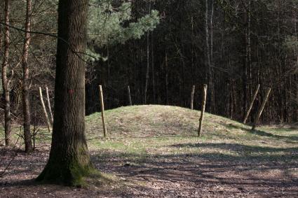 Gerstaureerde grafheuvel bij Halfmijl. Vessemse Dijk, Veldhoven. © Rijksdienst voor het Cultureel Erfgoed