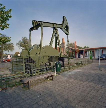 Jaknikker in Schoonebeek, Drenthe. © Ton van der Wal (RCE)