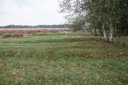 Karrensporen op het BallooÃ«rveld. © Rijksdienst voor het Cultureel Erfgoed