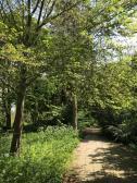 Voormalig arboretum van de VU bij Uilenstede © B. van Veen