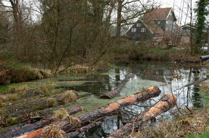 Balkengat bij de houtzaagmolen Twickel nabij Delden, Overijssel. © Eddy Blenke (Stichting beheer Houtzaagmolen Twickel)