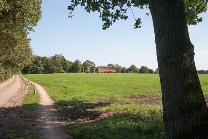 Boerderij aan een es. Molenbeltsweg, Heeten.  Landschapsbiografie Oost-Nederland, omgeving Raalte. © Rijksdienst voor het Cultureel Erfgoed