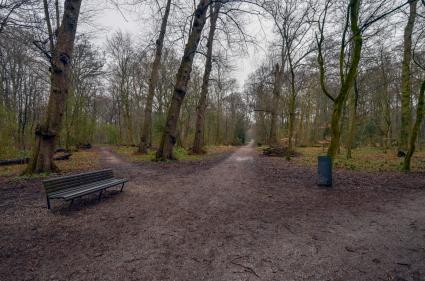 Voormalig galgenveld aan de Wagenweg/Westerhout te Haarlrm © B. van Veen