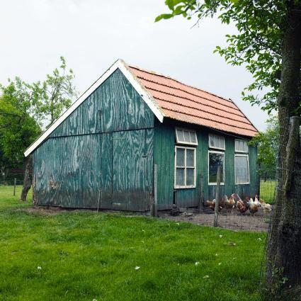 Kippenhok in Oost-Nederland © Foto Yke Ruessink.