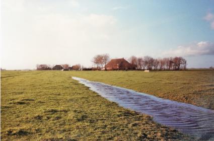 Leie in de Greidhoeke (Friesland). © Ph. H. Breuker