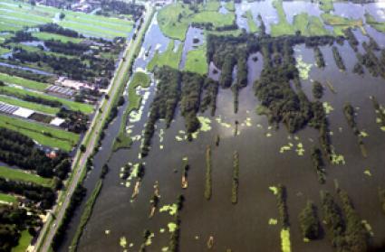 Petgaten in de Nieuwkoopse plassen met deels nog aanwezige legakkers. © Jan Arkesteijn