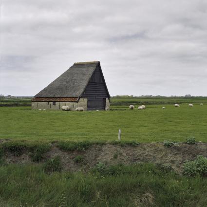 Schapenboet bij Oudeschilt, Texel. Op de voorgrond is een tuunwal te zien. © Rijksdienst voor het Cultureel Erfgoed.