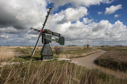 Weidemolentje in natuurreservaat Dijkmanshuizen. Texel © Koos Broek  2015