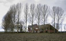 Uithof