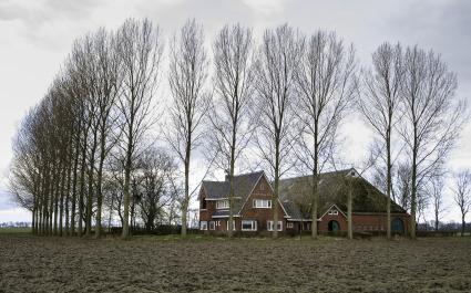 De boerderij Nieuw Voorwerk te Westeremder Voorwerk. De boerderij is gebouwd op de locatie van een voormalig voorwerk van het Premonstratenzer klooster Bloemhof in Wittewierum. © Hardscarf