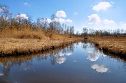 Nationaal Park Weerribben-Wieden © B. van Veen
