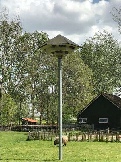 Zwaluwtil bij de Elsenhove Ouderkerk aan de Amstel © B. van Veen